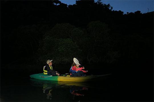 静かな水面を進むナイトカヤックツアー