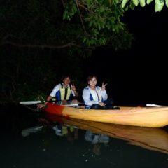 夜のマングローブ