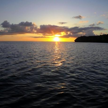 東シナ海に