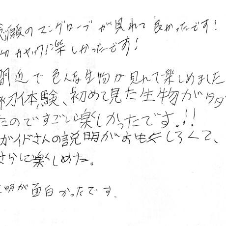 沖縄マングローブカヤックツアーのご感想