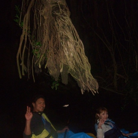 アコウ樹の下