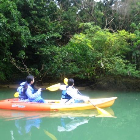 見上げる比謝川の自然