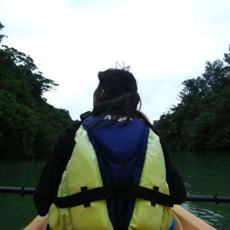 マングローブの川を進みます