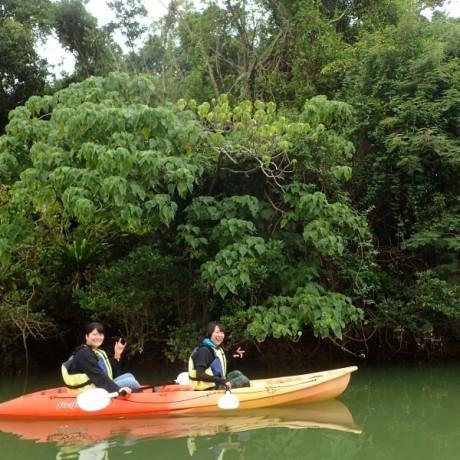 緑の世界と自然を学ぶ